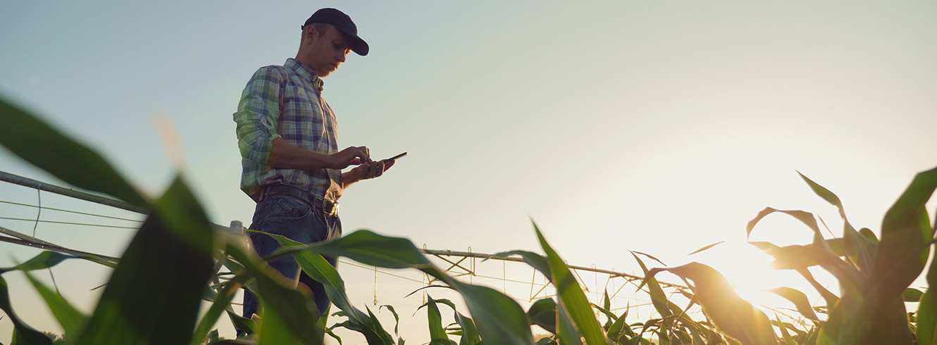 Farmer on a tablet standing in a crop field with the sun behind him.